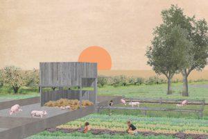 Das Aedes Architekturforum präsentiert vom 18. Januar bis zum 5. März 2020 Architekturentwürfe von Studenten zum Thema »Architektur für Schweine« .