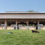 Rinderstall in Atzbachvon Architekt Herbert Schratteneck, Preisträger beim Landbaukultur-Preis 2021er