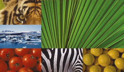 wirkung von farben menschliche emotionen anwendung im raum, farbpsychologische aspekte. kontraste steigern wirkung, Design ideen