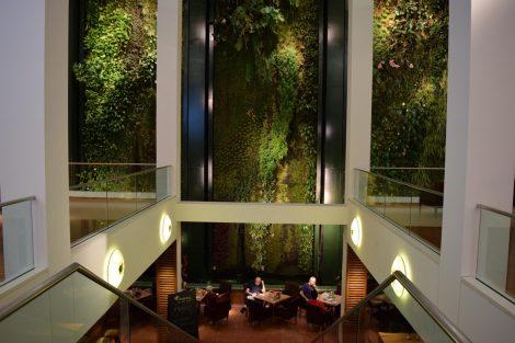 """Unfassbare Dimensionen der fast 300 qm großen Innenraumbegrünung """"Mur Végétal"""" von Patrick Blanc. Bild: BuGG"""