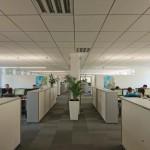 Modernes und helles Großraumbüro: Die Raumakustik wurde dank Decke auf viel Telefonverkehr abgestimmt.
