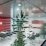 Glastrennwände im Büro
