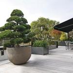 Terrasse mit Markise und großen Pflanzentöpfen. Bilder: Immo Herbst GmbH