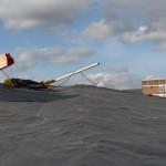 Die Dachnbahnen wurden vollflächig auf die vorhandene, bituminöse Abdichtung verklebt.