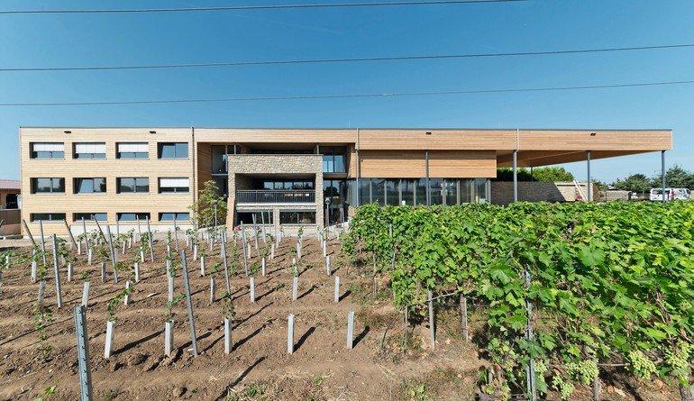 Mitten in den Weinbergen bietet das Weingut nicht nur eine Besenwirtschaft, sondern wird auch den Anforderungen eines modernen Betriebshofes gerecht. Bild:Joachim Mohr, Tübingen