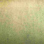 Sandpapier-ähnlicher Bodenbelag. Bild: imi