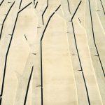 """Die fein strukturierten Betonoberflächen werden durch Licht- und Schattenspiele """"zum Leben erweckt"""". Bild: Noe-Schaltechnik"""