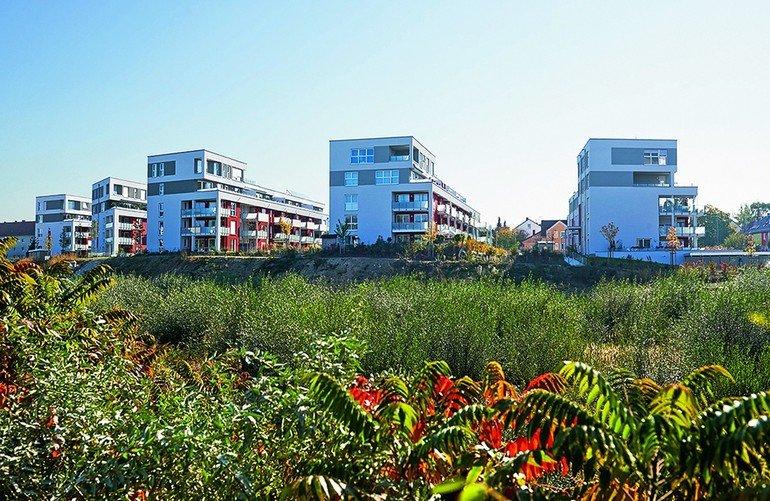 Ohne Rutschgefahr und Splitter: Pflegeleichte Terrassendielen. Bilder: Naturinform