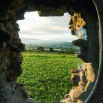Blick von innen nach außen: Schottlands Natur und das Bestandsmauerwerk sind stets gegenwärtig. Bild:Lilly Jencks Studio