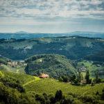 Weingut in der Steiermark