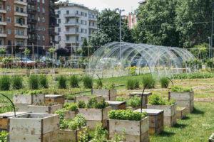 Stadtentwicklung mit Urban Gardening