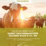 Innovator Award von PETA für veganen Außen- und Innenputz