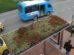 Die Dachbegrünung der 316 Bushaltestellen in der niederländischen Stadt Utrecht soll zu einem besseren Stadtklima und mehr Artenschutz beitragen. Bild: BuGG