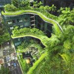 Fassaden-Begrünung in Singapur