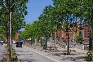 """Besseres Stadtklima: Das Forschungsprojekt """"BlueGreenStreets"""" untersucht, wie mehr Stadtgrün und Wasserflächen in den Straßenraum integriert werden können. Bild: HCU Hamburg"""