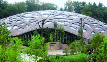 Starke Platten für das Elefantenhaus im Zürcher Zoo: 4000 Qudratmeter esb-Platten wurden in der imposanten Dachkonstruktion verbaut. Bild: elka Holzwerke