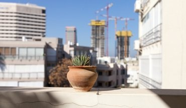 """Mit dem Festival """"White Night Tel Aviv"""" feiert Tel Aviv am 28. Juni 2018 sein Bauhaus-Erbe. Bild: Yael Schmidt"""