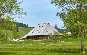 Kienzlerhansenhof, Schönwald im Schwarzwald /Baden- Württemberg. Architekten: Gössel + Kluge Generalplaner GmbH, Stuttgart. Bild: Deutscher Landbaukultur-Preis