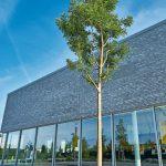 Klinkerfassade mit durchgängig verglastem Erdgeschoss, Baum im Vordergrund. Bild: alwitra