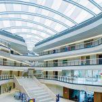 Holzwolle-Akustikplatten für Neubau eines Schulgebäudes in Köln