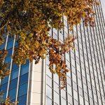 Homogen strukturierte Fassade mit schmalen Profilansichten und unterschiedlichen Glastypen. Bild: Marcus Pietrek