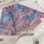"""Die hochabsorbierenden Akustik-Deckenplatten """"Thermatex Varioline SF Motiv"""" lassen sich individuell bedrucken und erlauben es somit, farbige, großflächige Motive auf Raster-Decken zu bringen. Bild: Knauf AMF"""