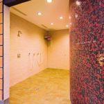 Neue Platten und Konstruktionen erweitern die Anwendungs- und Gestaltungsmöglichkeiten im Trockenbau, etwa für Nassräume mit elegant geschwungenen Wänden. Bild: Fermacell