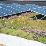 Solarzellen. Bild: Bauder