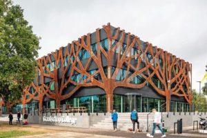 Stilisierte Eiche für Fassade des Schulgebäudes.