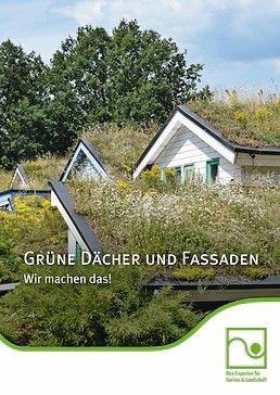 Broschüre der BGL zum Thema Grüne Dächer und Fassaden