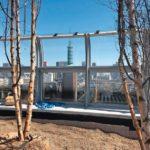 Bäume wachsen auf der mit EPDM-Dachabdichtung vorbereiteten Dachfläche.