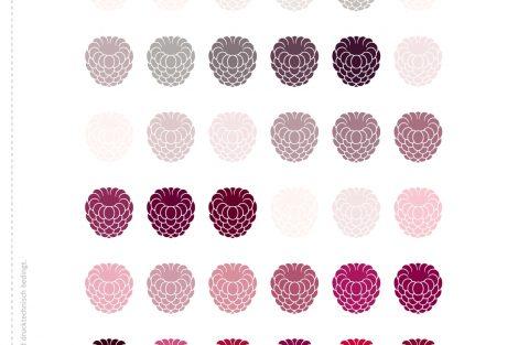 """Der Einhefter greift noch einmal die im Heft herausgestellte Farbe im Kontext der jeweiligen Farbfamilie auf. In der aktuellen Ausgabe ist dies die Darstellung der Scala-Farbfamilie 33, aus der der Farbton """"Himbeerrot"""" stammt. Bild: Brillux"""