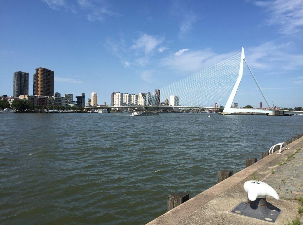 Die Erasmusbrücke im Hafen von Rotterdam
