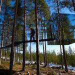 Sieben verschiedene Häuser können Baumhotel-Besucher in Schwedisch Lappland beziehen. Eines davon ist komplett verspiegelt. Foto: Graeme Richardson
